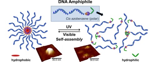 Photocontrolled micellar aggregation of amphiphilic DNA-azobenzene conjugates